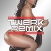 Best of Twerk Remix 2015 (Booty Shake Music), Various Artists