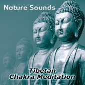 Nature Sounds – Relaxation & Tibetan Chakra Meditation, Healing Massage and Spa, Yoga Music Sound Therapy for Chakra Balancing, Baby Deep Sleep, Studying Music