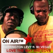 Love the Way She Love (feat. Mr Vegas) - Single