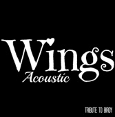 [Download] Wings (Acoustic) (250 Year Anniversary Lloyds Advert) (Remake of Birdy) [Karaoke Version] MP3