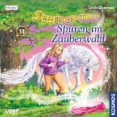 Teil 11: Spuren im Zauberwald, Kapitel 2