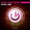 Open Your Heart (feat. Sinne) - Single
