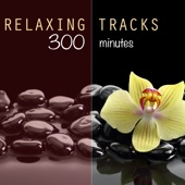 Relaxing Tracks (300 Minutes) - For Meditation, Relaxation, Reiki, Yoga, Massage, Spa Therapy and Deep Sleep - The Relaxation Masters