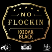 No Flockin - Kodak Black Cover Art