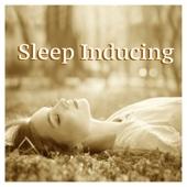 REM Sleep Helper