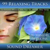 99 Relaxing Tracks (20 Minute Sessions) For Relaxation, Meditation, Reiki, Yoga, Spa, Massage and Sleep Therapy - Sound Dreamer
