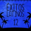 Éxitos Latinos (Volumen 12), Black and White Orchestra