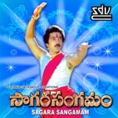 Ve Vela Gopemmala - S. P. Balasubrahmanyam & S. P. Sailaja