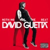 Nothing But the Beat, David Guetta