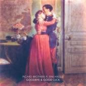 Goodbye & Good Luck (feat. Erik Hassle) - Single