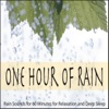 One Hour of Rain Rain Sounds for 60 Minutes for Relaxation and Deep Sleep