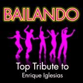 Bailando (Karaoke Version) [Originally Performed by Enrique Iglesias]