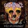 Devil's Got a New Disguise: The Very Best of Aerosmith, Aerosmith
