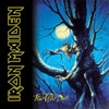 Fear of the Dark, Iron Maiden