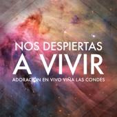 Nos Despiertas a Vivir - Adoración En Vivo Viña Las Condes (Live)