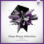 Armada Deep House Selection, Vol. 1 (The Finest Deep House Tunes)