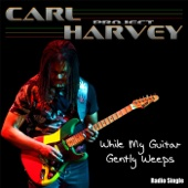 While My Guitar Gently Weeps (Radio Single)