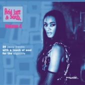 Acid Jazz & Soul, Vol. 4 (20 Jazzy Tracks with a Touch of Soul for the Nightlife)