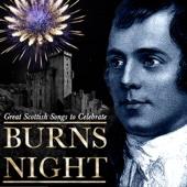 Great Scottish Songs To Celebrate Burns Night