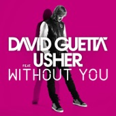 Without You (feat.Usher) [Style of Eye Remix] - Single
