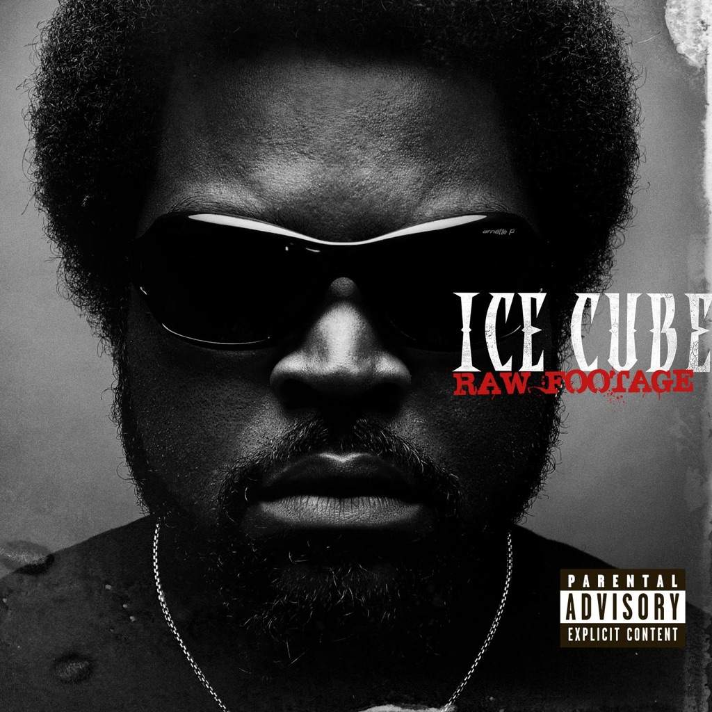 Ice Cube - Gangsta Rap Made Me Do It,Ice Cube,Gangsta Rap Made Me Do It,music,DeWALTdig\17