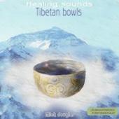 Tibetan Bowls (Cuencos Tibetanos)