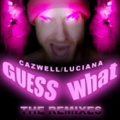 Guess What? (Remixes) cover art