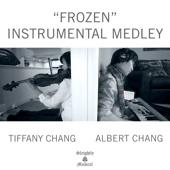 Frozen Instrumental Medley