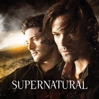 Supernatural, Season 10 (iTunes)