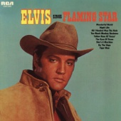 Elvis Sings Flaming Star cover art