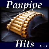 Flauta De Pan Hits, Vol. 1
