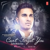 [Download] Can't Forget You / Tujhe Bhula Diya MP3