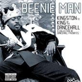Girls Dem Sugar (feat. Mya) - Beenie Man Cover Art