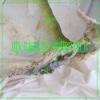 My Name Is Written on It - Single
