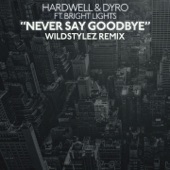 Never Say Goodbye (feat. Bright Lights) [Wildstylez Remix] - Single