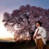 季(TOKI)-春-