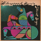 Widespread Panic - Street Dogs  artwork