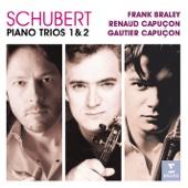 Piano Trio No. 2 in E-Flat Major, D. 929: II. Andante con moto