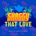 Shaggy That Love