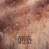 Agnes Obel - Citizen of Glass artwork