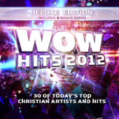 WOW Hits 2012 (Deluxe Edition)
