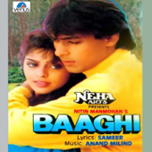 Baaghi (Original Motion Picture Soundtrack)