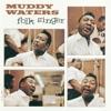 The Folk Singer, Muddy Waters