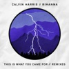 This Is What You Came For (feat. Rihanna) [Remixes], Calvin Harris