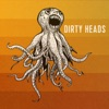 That's All I Need by Dirty Heads
