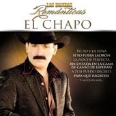 Maldito Licor - El Chapo