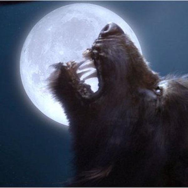 Werewolf the Forsaken 2nd Edition