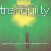 Hypnosis - Voices of Tranquility, Vol. 2 artwork