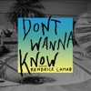 Don't Wanna Know (feat. Kendrick Lamar) - Single