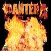 Reinventing the Steel, Pantera